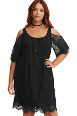 Svart Plus Size Lace Cold Shoulder Trapeze Dress