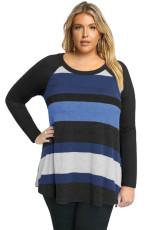 Zwart Multi Colorblock Raglanmouw Plus size dames top