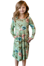 Pêkûpên veşartî yên Flora Mint Swing Dress