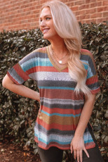 Multicolor Color Block V Neck Short Sleeve Top
